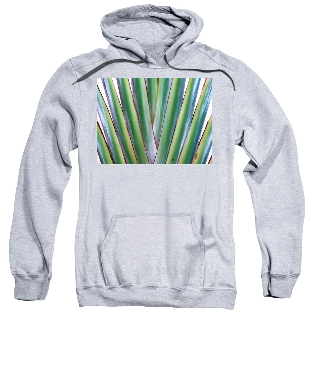 Tree Sweatshirt featuring the photograph Travelers Palm 3 by Dawn Eshelman