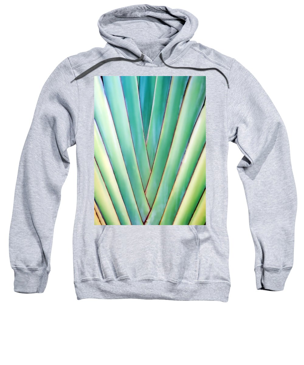 Tree Sweatshirt featuring the photograph Travelers Palm 6 by Dawn Eshelman