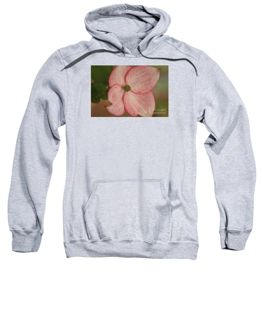 Flower Sweatshirt featuring the photograph Tree Flower by Deborah Benoit