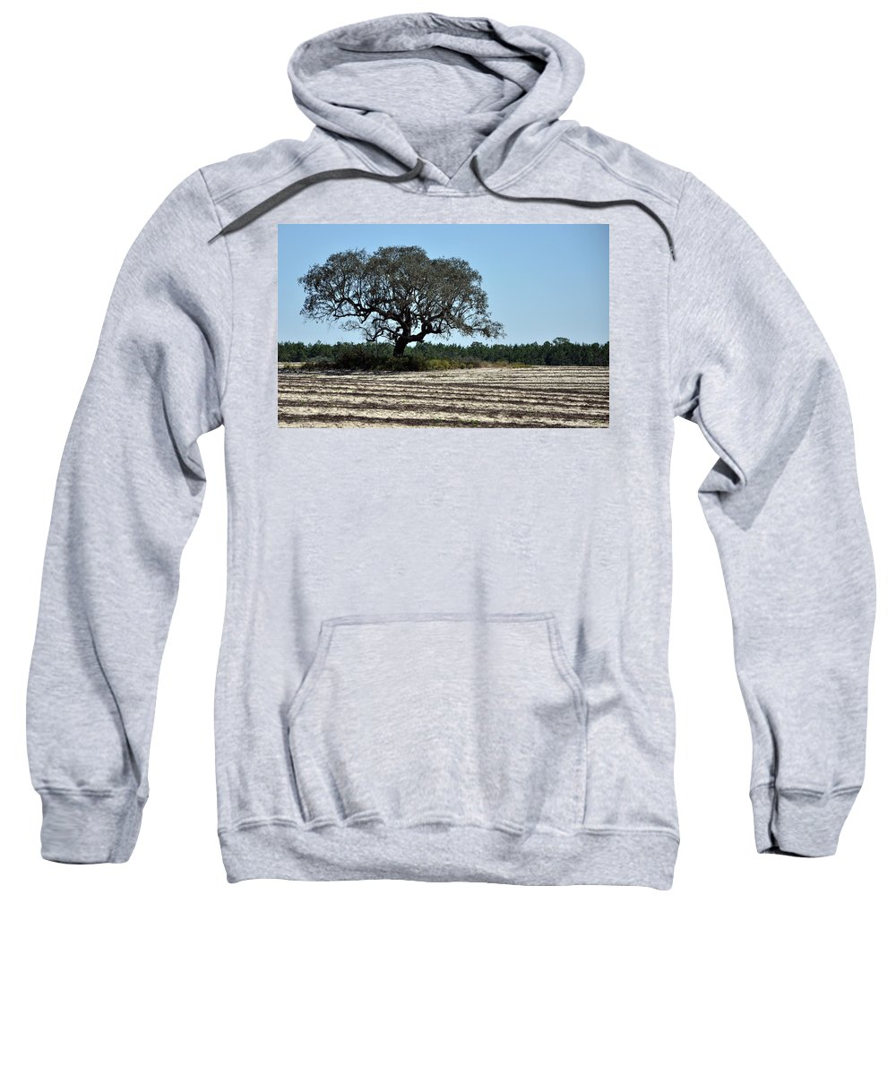 Field Sweatshirt featuring the photograph Tree In Plowed Field by Randi Kuhne