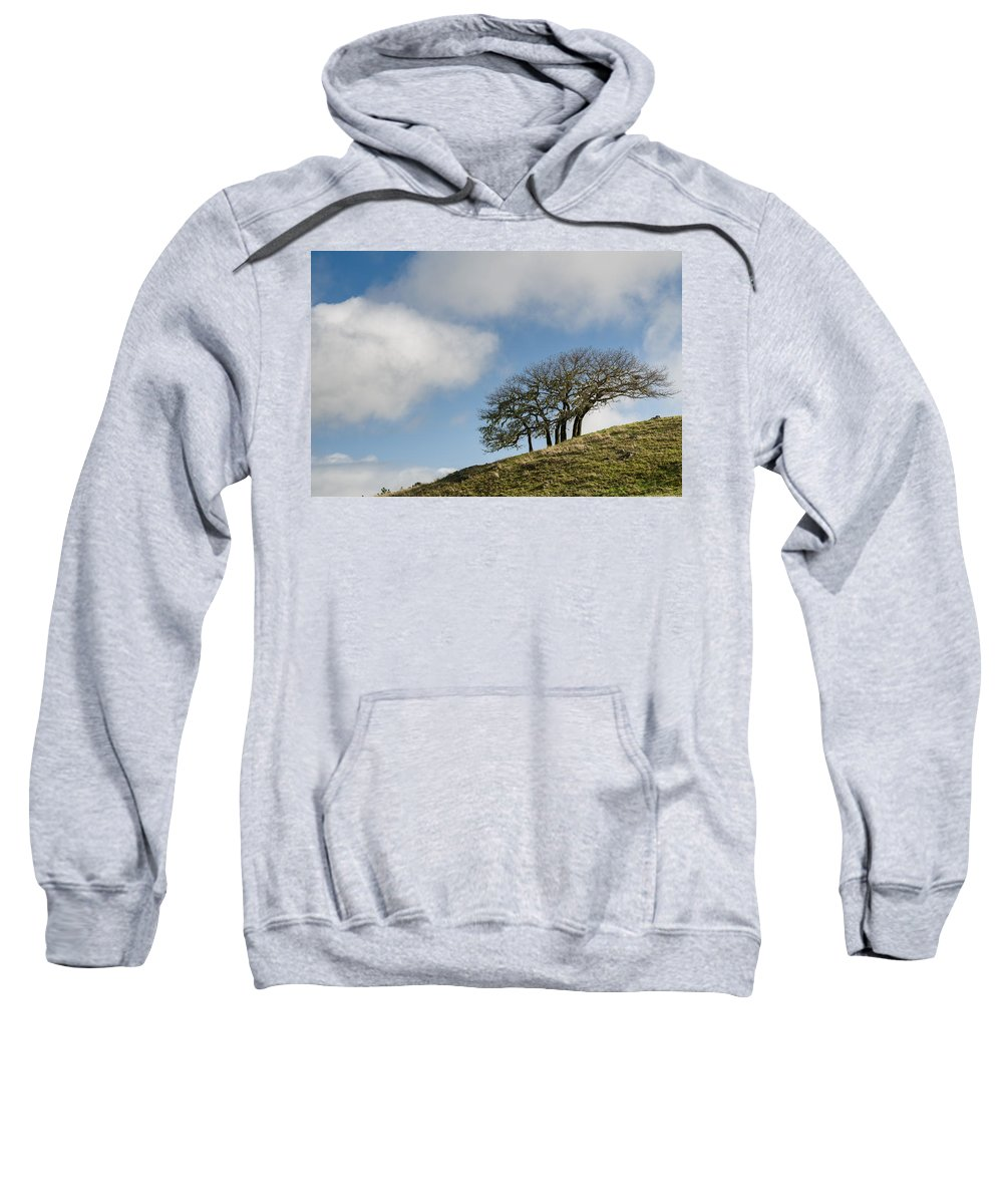 Humboldt Hills Sweatshirt featuring the photograph Tree On Hillside by Greg Nyquist
