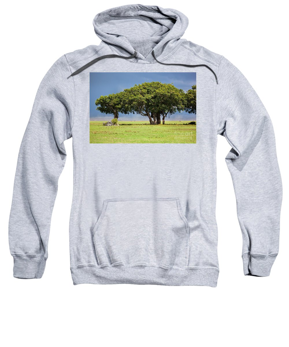 Africa Sweatshirt featuring the photograph Tree On Savannah. Ngorongoro In Tanzania by Michal Bednarek