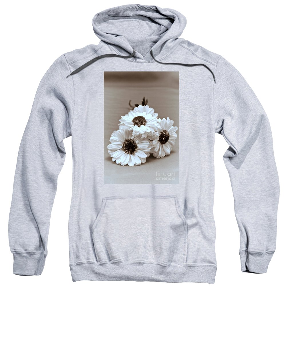 Country Sweatshirt featuring the photograph Trio by Robin Lynne Schwind