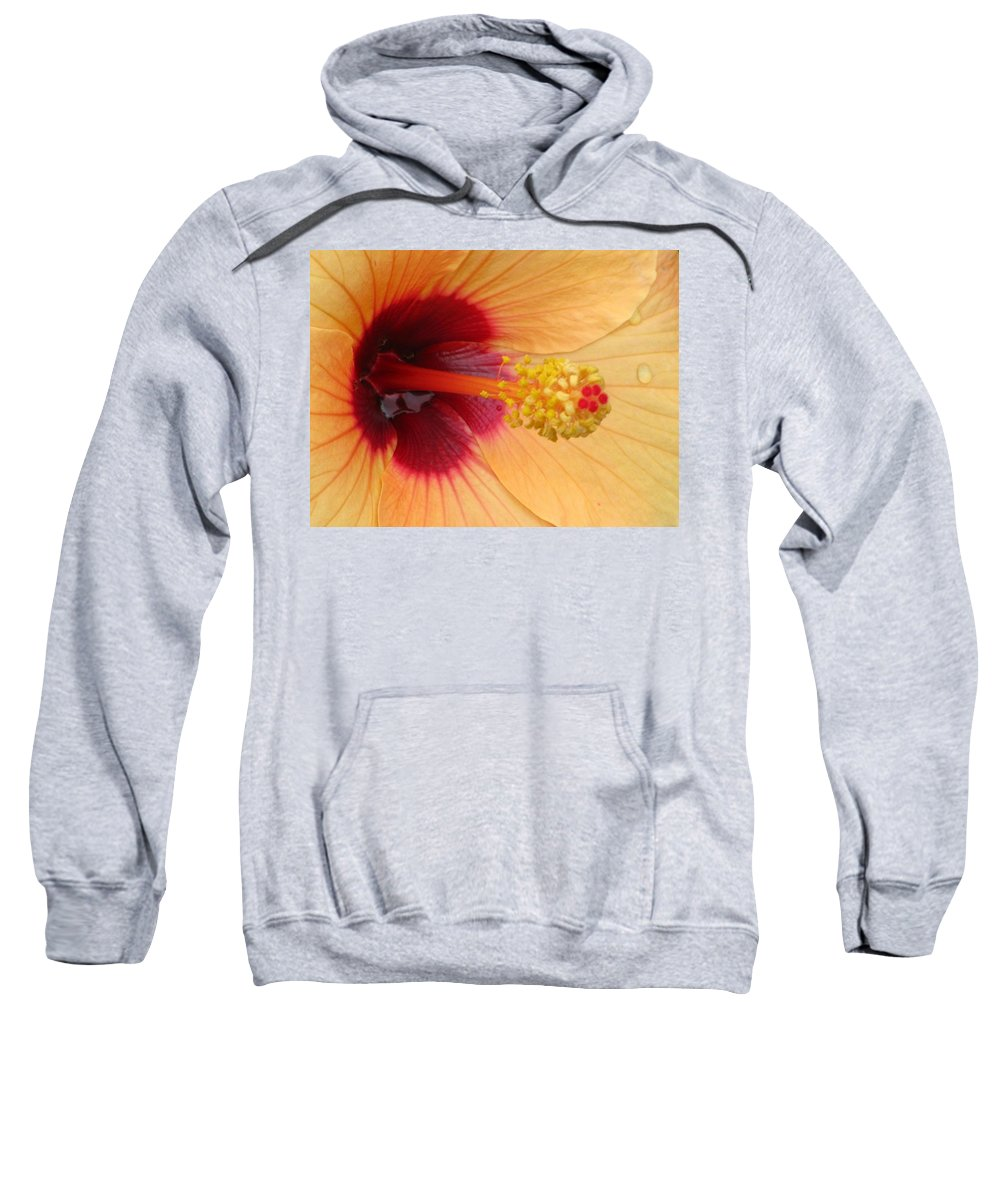Hibiscus Sweatshirt featuring the photograph Tropical Hibiscus - Aruba Wind 01 by Pamela Critchlow