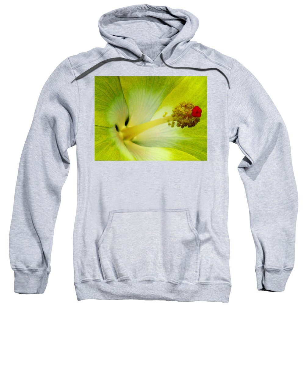 Hibiscus Sweatshirt featuring the photograph Tropical Hibiscus - Bonaire Wind 06a by Pamela Critchlow