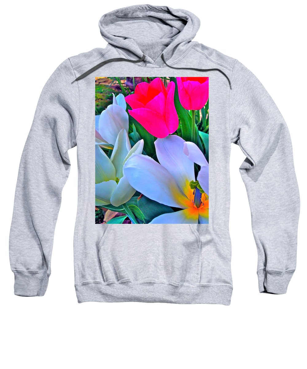 Flowers Sweatshirt featuring the photograph Tulip 35 by Pamela Cooper