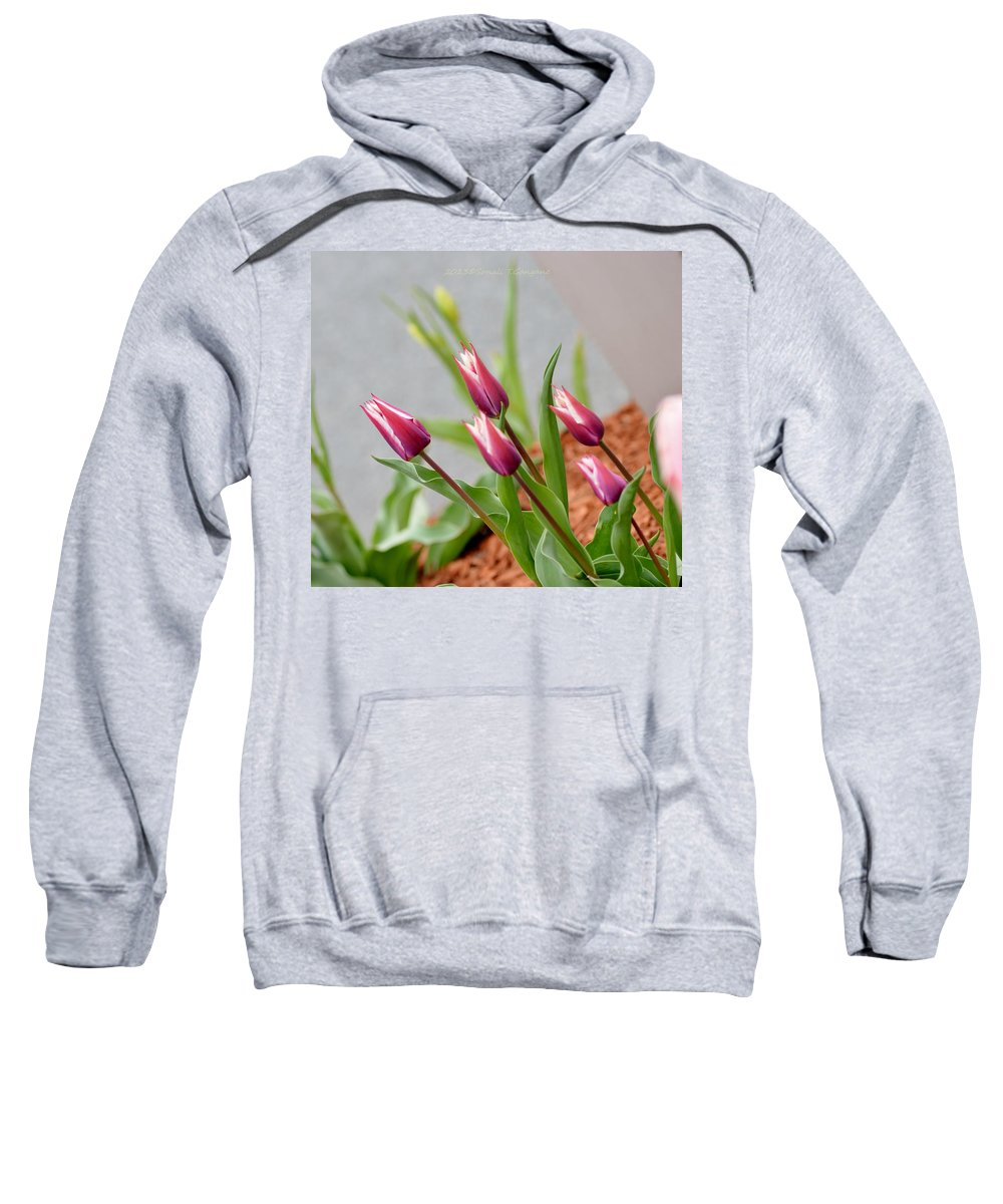 Tulip Time Sweatshirt featuring the photograph Tulip Time by Sonali Gangane
