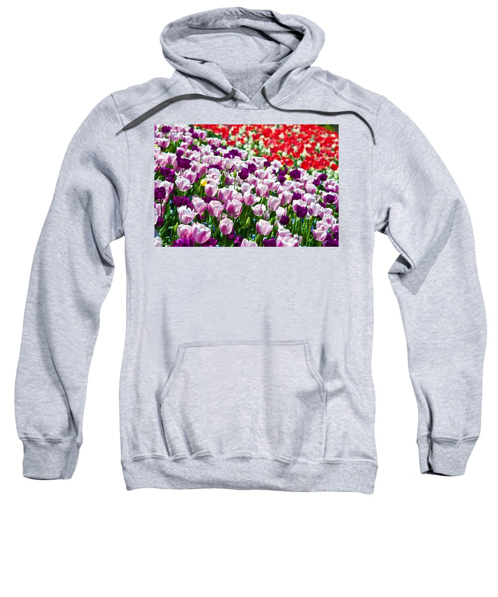 Tulip Sweatshirt featuring the photograph Tulips Field by Sebastian Musial