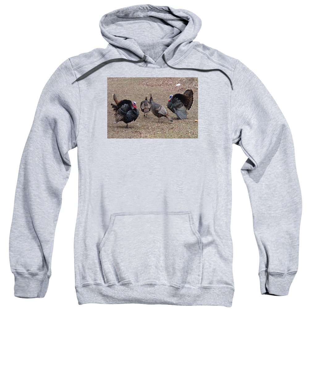 Turkey Sweatshirt featuring the photograph Turkey Dance by Robert Nickologianis