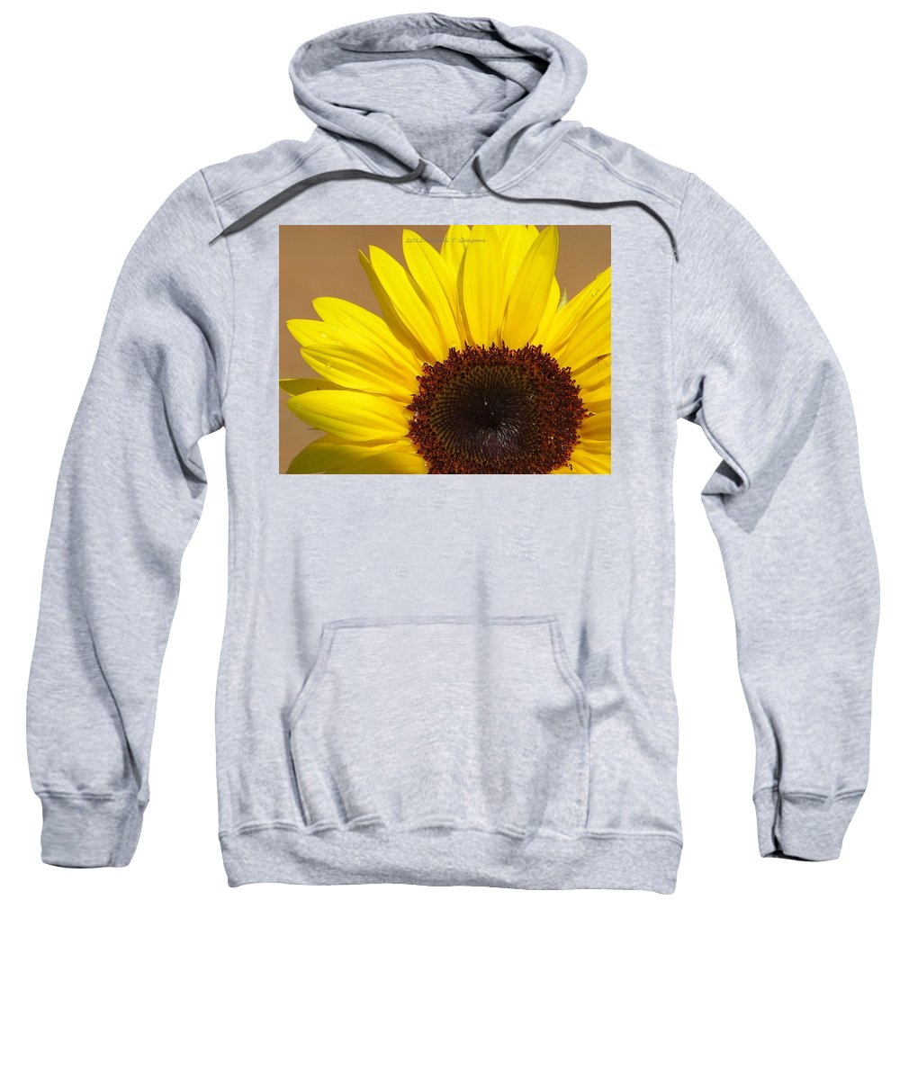 Yellow Beauty Sweatshirt featuring the photograph Turmeric Aster by Sonali Gangane
