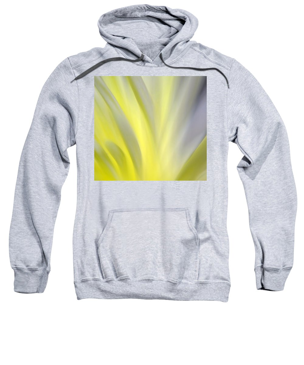 Nature Abstract Sweatshirt featuring the photograph Turning Slowly Toward The Light by KM Corcoran
