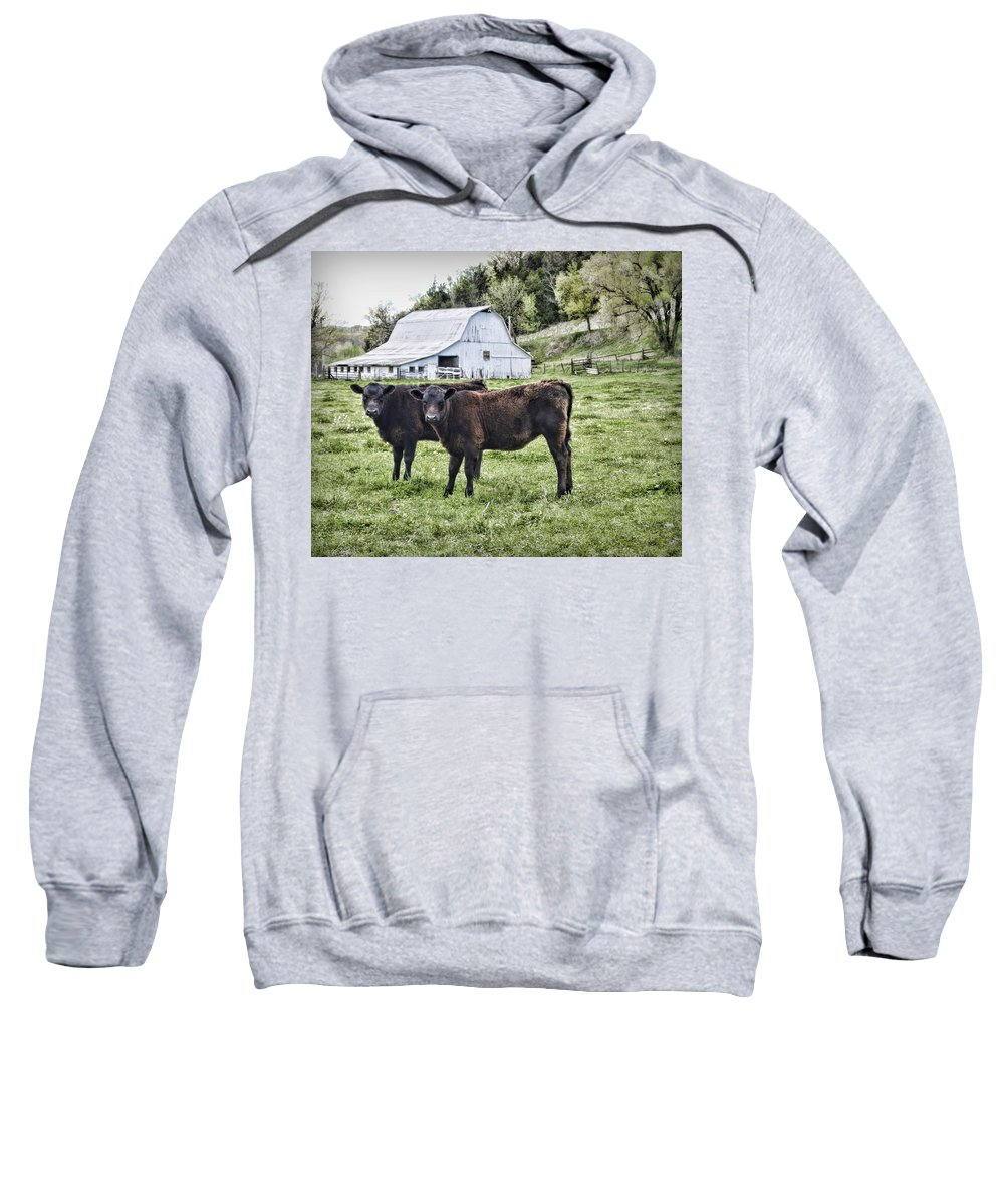Cow Sweatshirt featuring the photograph Two Of A Kind by Cricket Hackmann