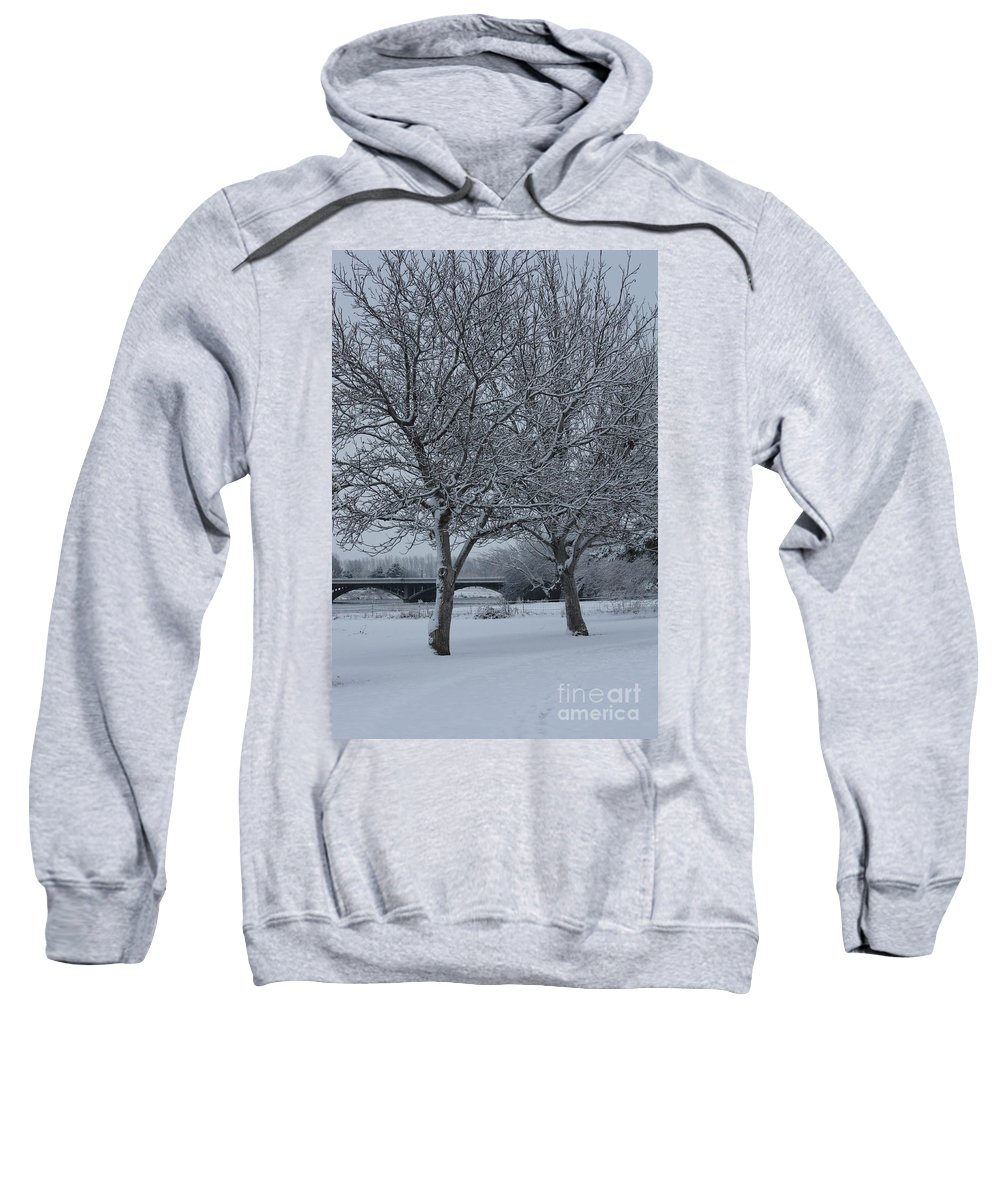 Winter Sweatshirt featuring the photograph Two Winter Trees by Carol Groenen