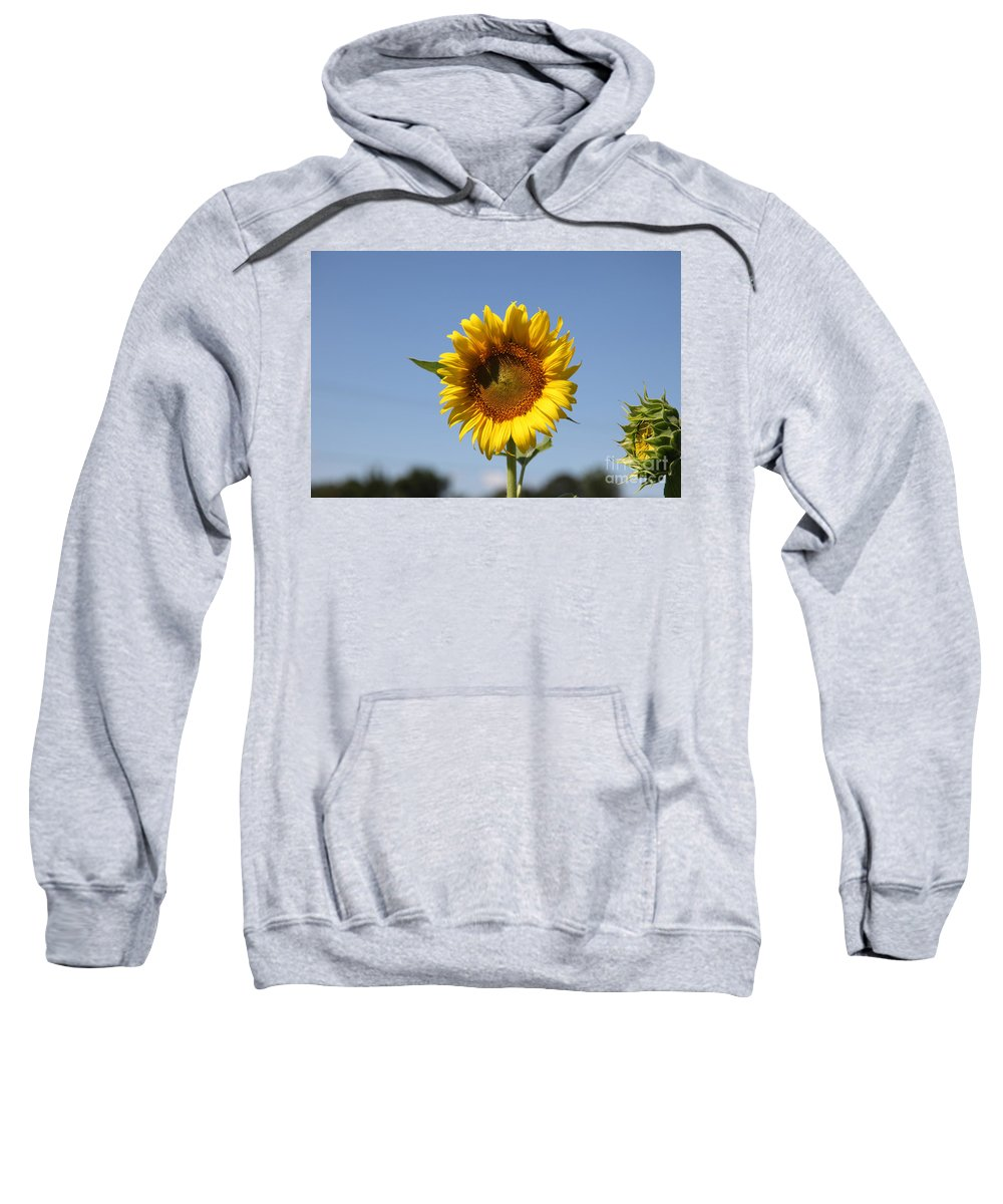 Sunflowers Sweatshirt featuring the photograph United Through Challenge by Amanda Barcon