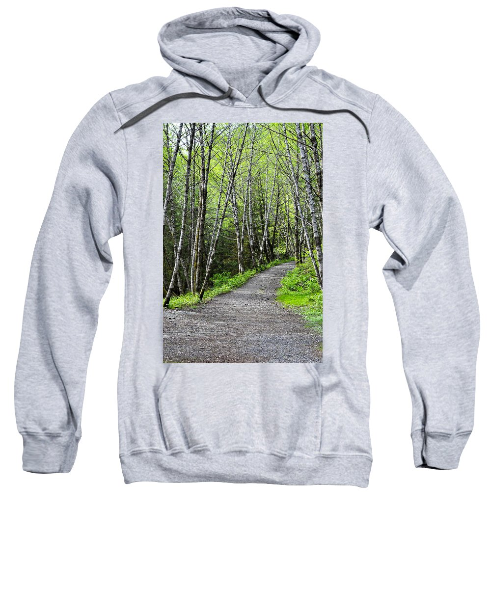 Landscape Sweatshirt featuring the photograph Up The Trail by Cathy Mahnke