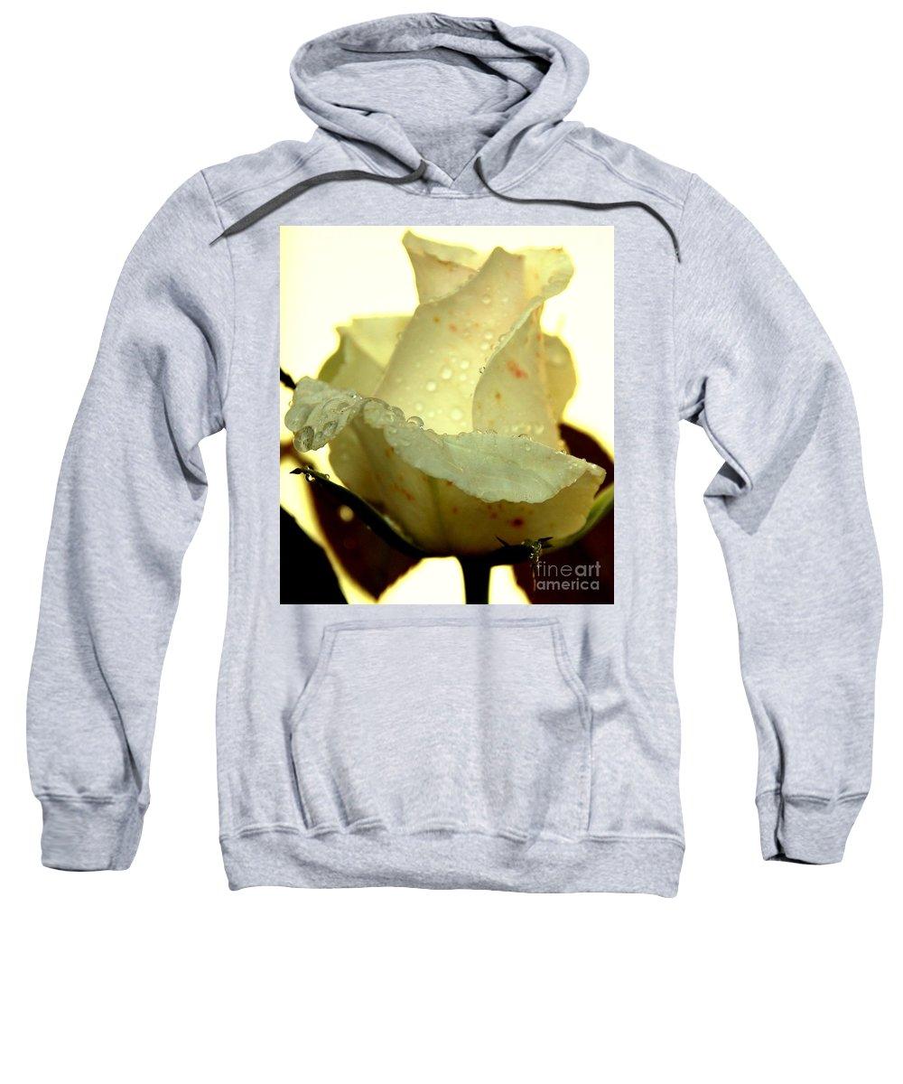 Valentines Sweatshirt featuring the photograph Valentine Rose by Randy J Heath