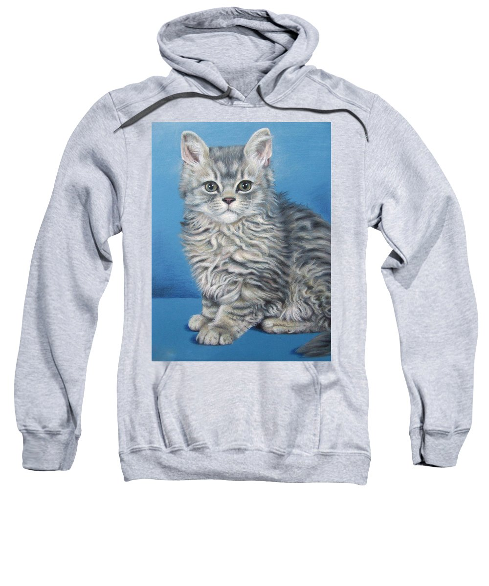 Cat Sweatshirt featuring the drawing Velvet Kitten by Nicole Zeug