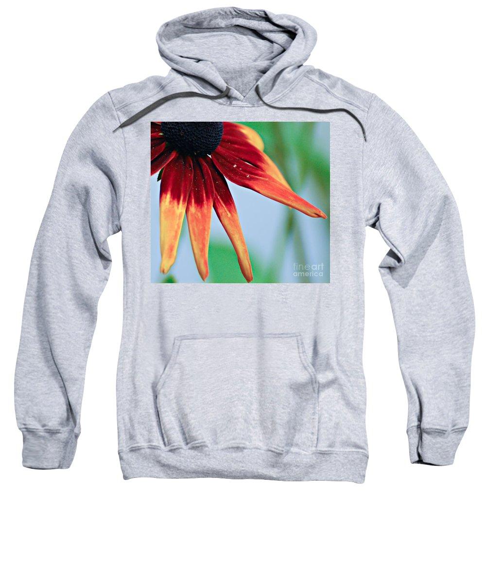 Flower Sweatshirt featuring the photograph Velvet Petals by Kerri Farley