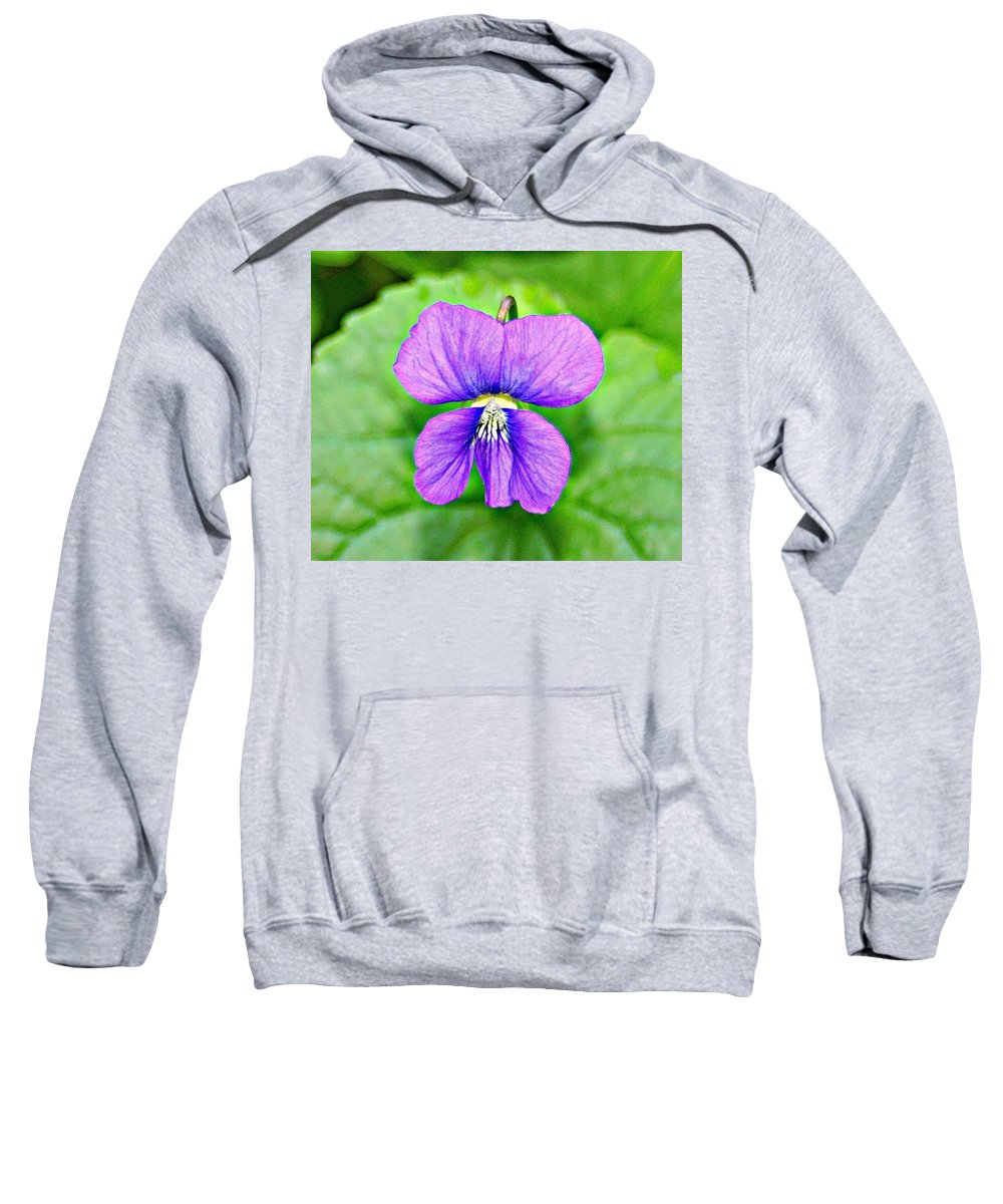 Macro Sweatshirt featuring the photograph Violets Are Blue by Barbara S Nickerson