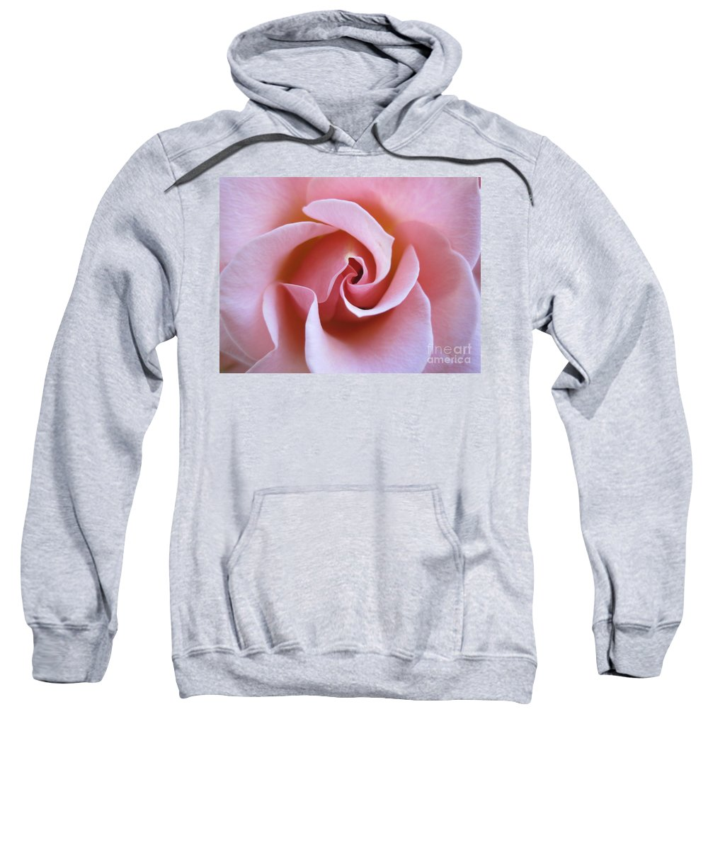 Floral Sweatshirt featuring the photograph Vivacious Pink Rose 5 by Tara Shalton