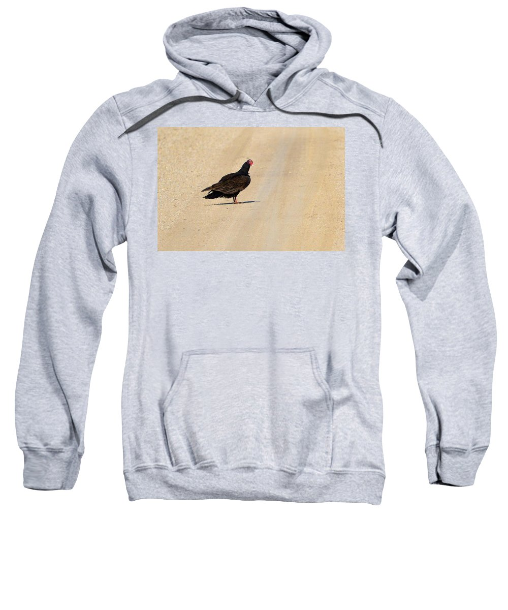 Turkey Vulture Sweatshirt featuring the photograph Vulture Road by Bonfire Photography