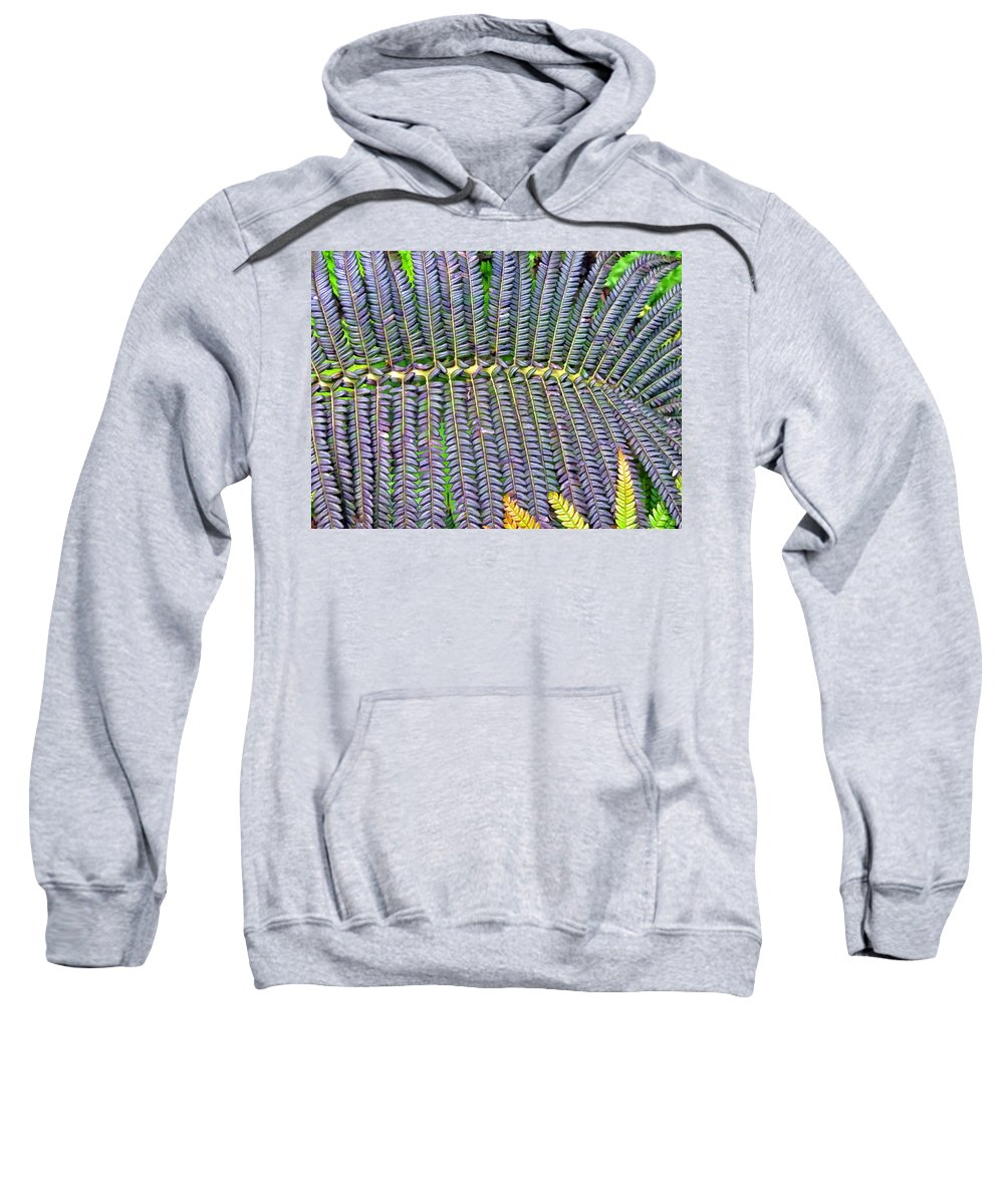 Fern Sweatshirt featuring the photograph Waikamoi 32 by Dawn Eshelman