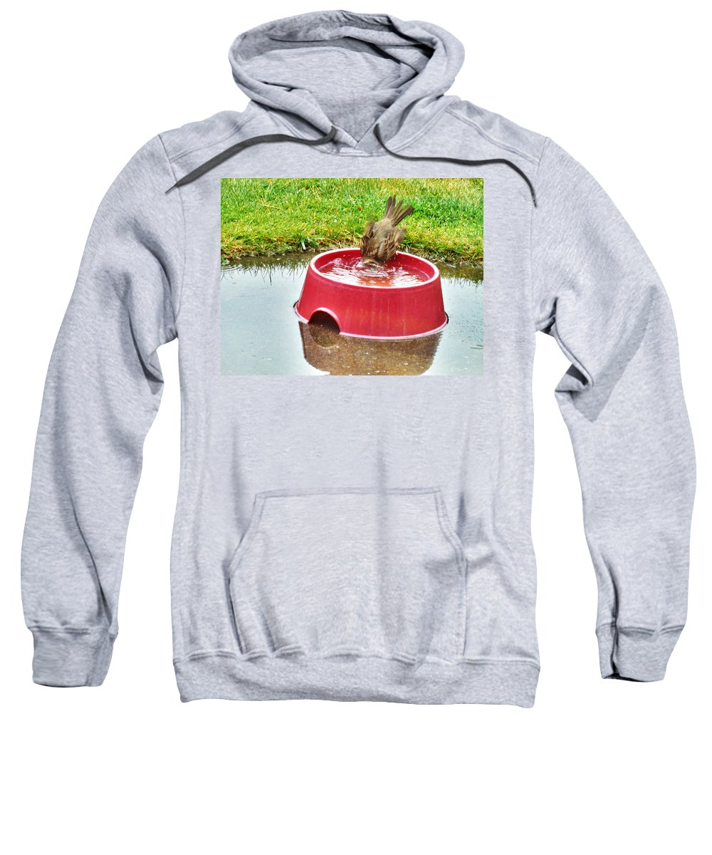 Sparrow Sweatshirt featuring the photograph Wash Your Face In My Sink by Steve Taylor