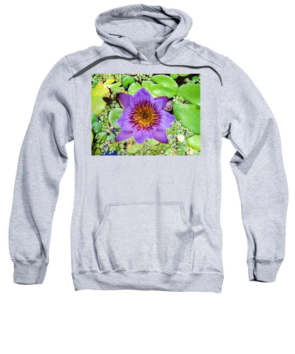 Flower Sweatshirt featuring the photograph Water Lilies 12 by Dawn Eshelman