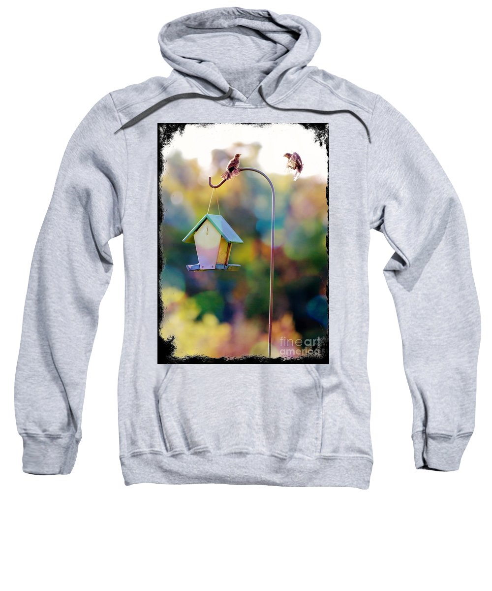 Birds Sweatshirt featuring the photograph Welcome Neighbor - Digital Art by Carol Groenen