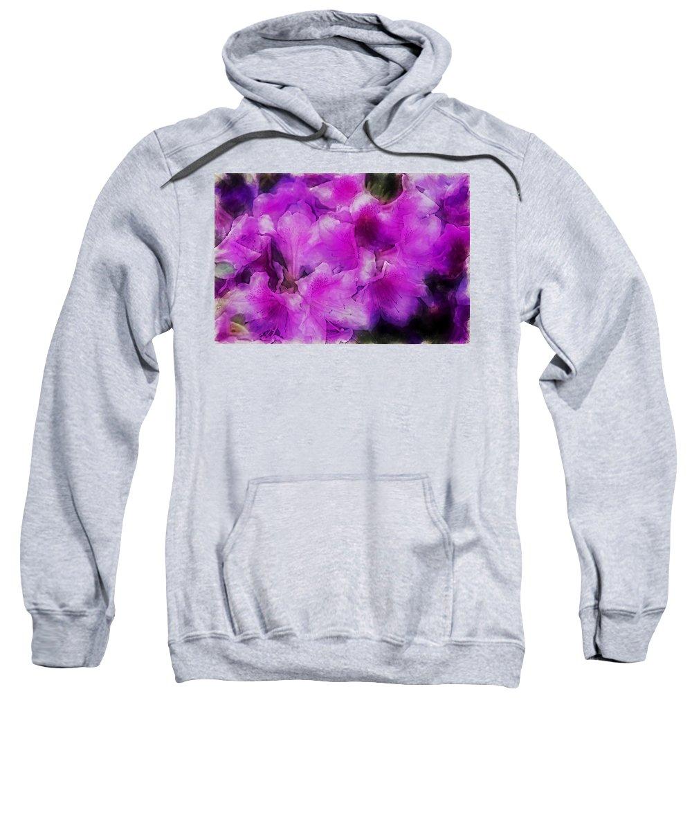 Flowers Sweatshirt featuring the digital art wers 2078 Traveling Pigments HP by David Lange