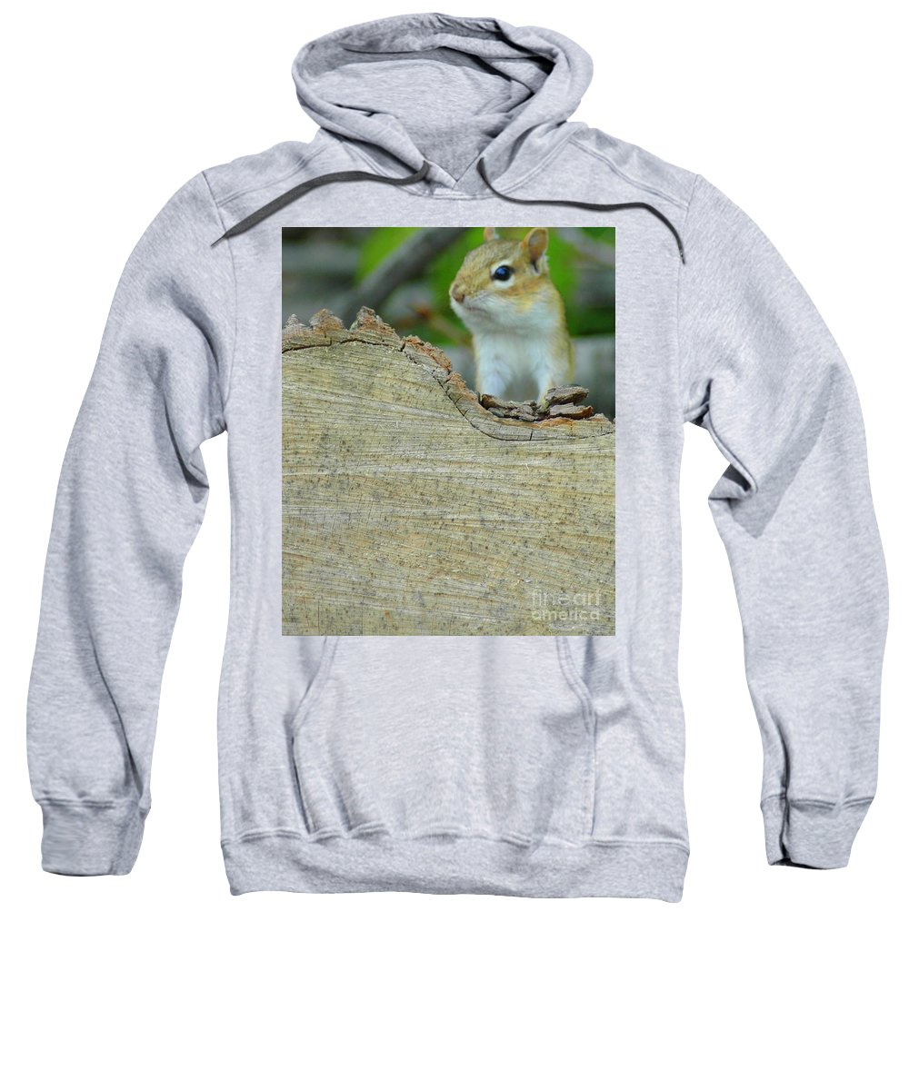 Chipmunk Sweatshirt featuring the photograph What's Up by Kathleen Struckle
