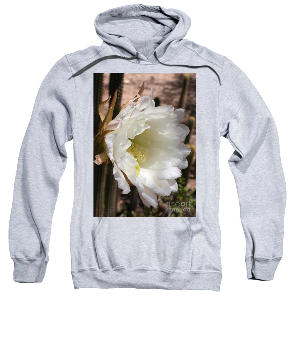 Cactus Flower Sweatshirt featuring the photograph White Cactus Bloom by Carol Groenen