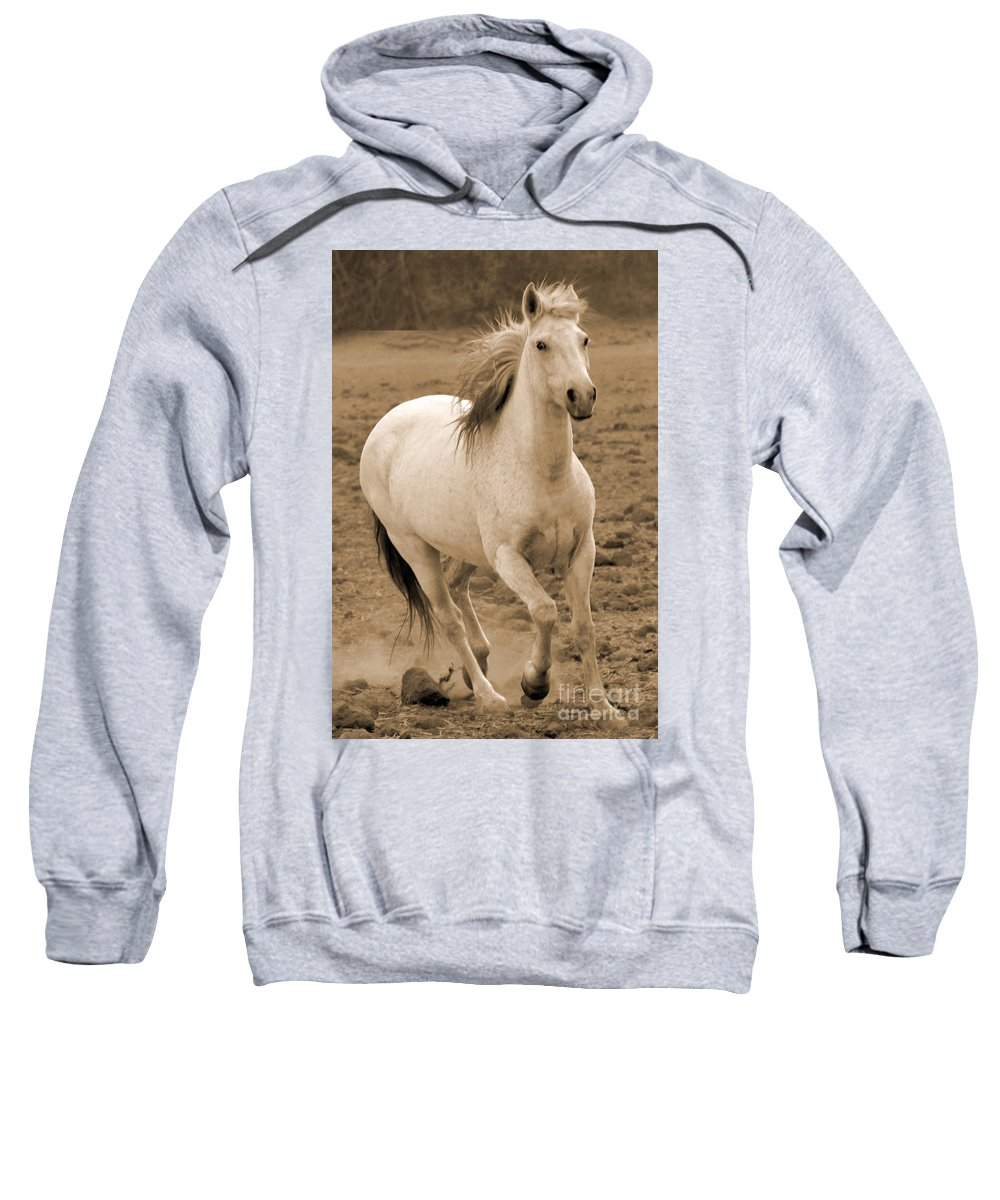 Rtf Ranch Sweatshirt featuring the photograph White Mare Approaches Number One Close Up Sepia by Heather Kirk