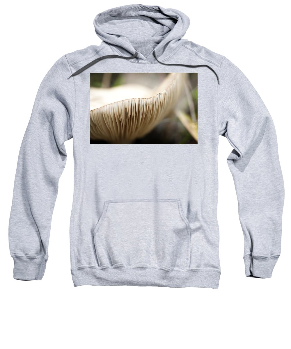 Soft Sweatshirt featuring the photograph White Mushroom Gills Closeup by Marilyn Hunt