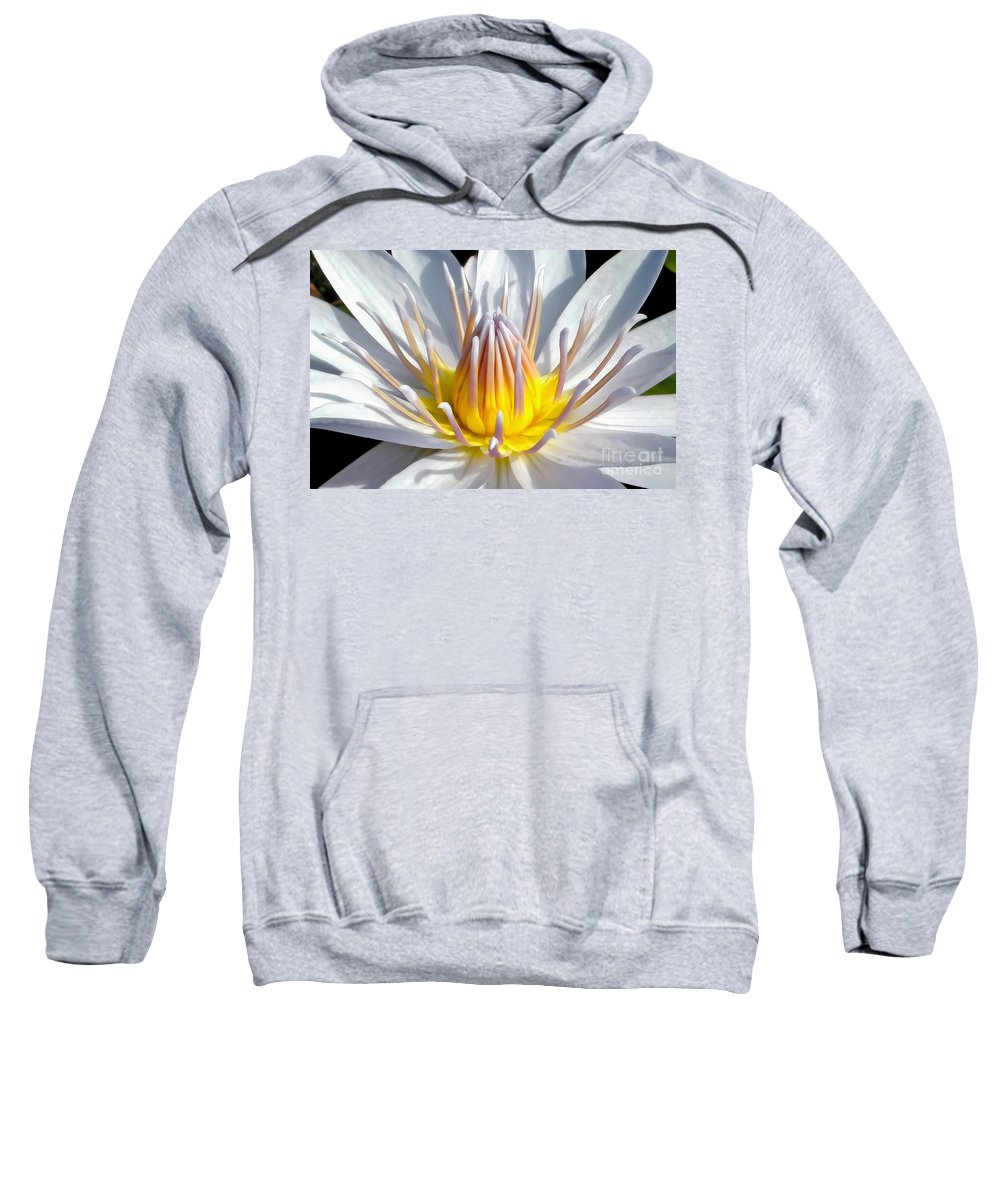 Photography Sweatshirt featuring the photograph White Waterlily by Kaye Menner