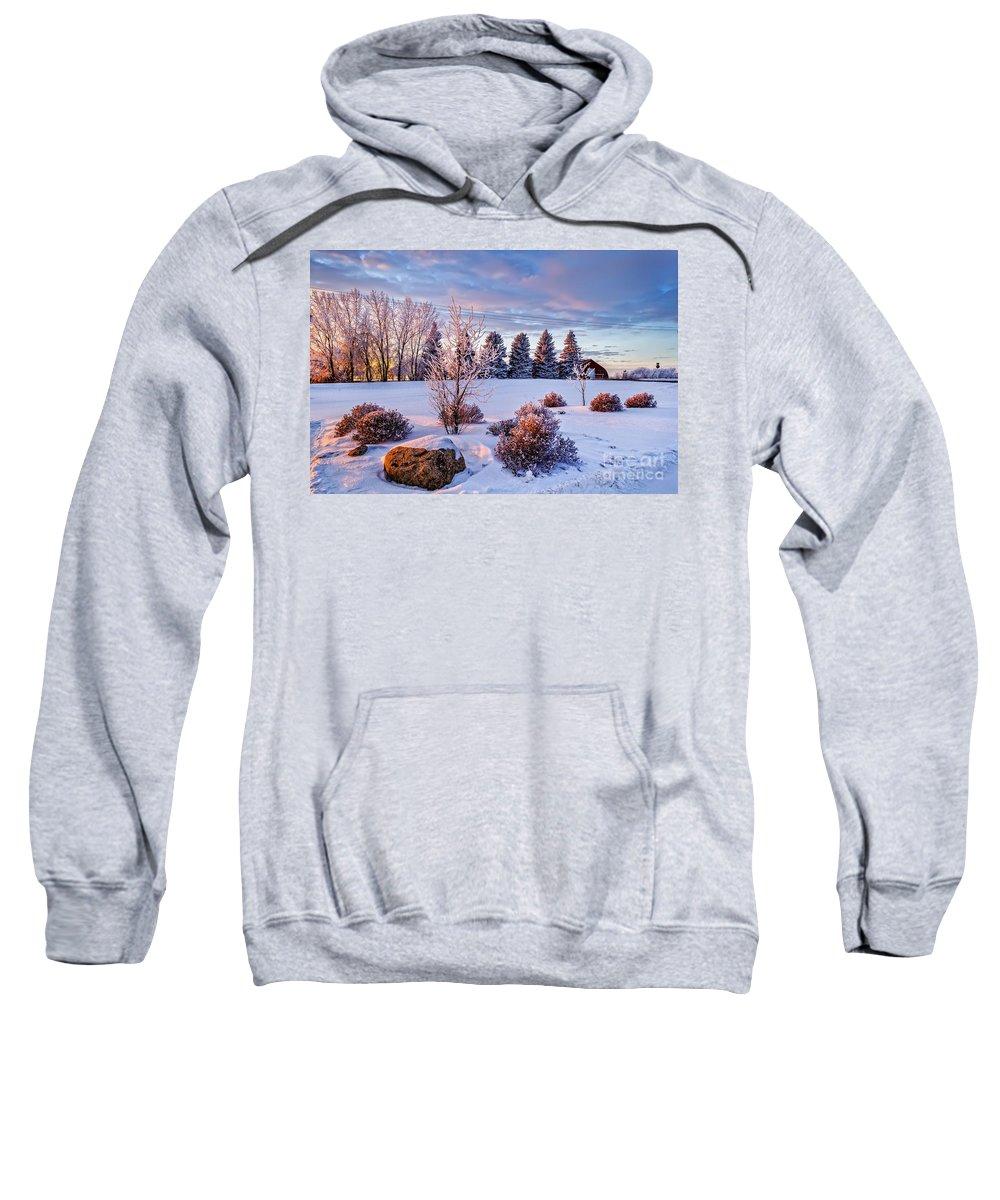 Winter Sweatshirt featuring the photograph Winter In Pink Color by Viktor Birkus