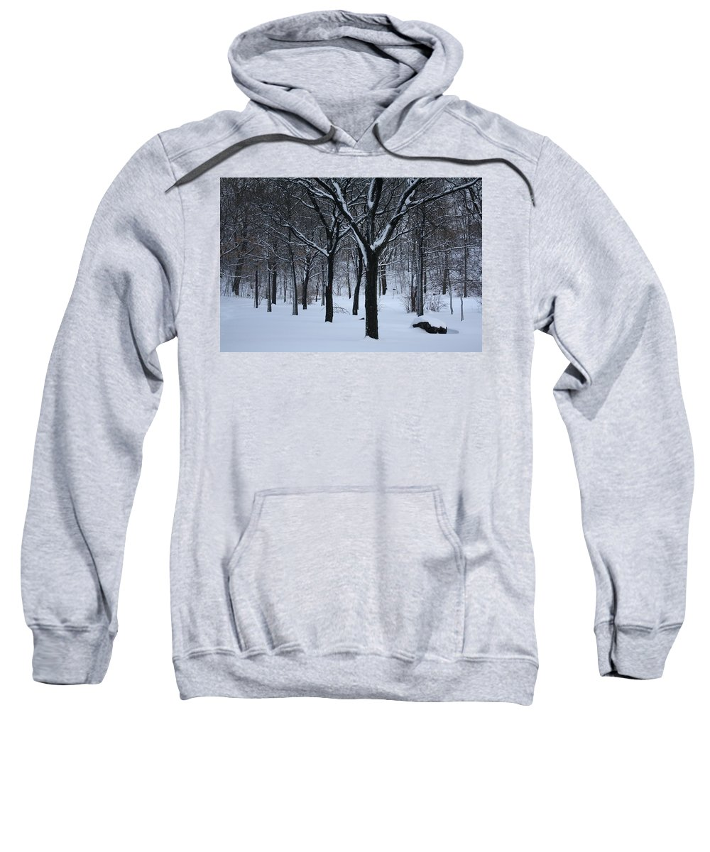 Winter Sweatshirt featuring the photograph Winter In The Park by Dora Sofia Caputo Photographic Design and Fine Art