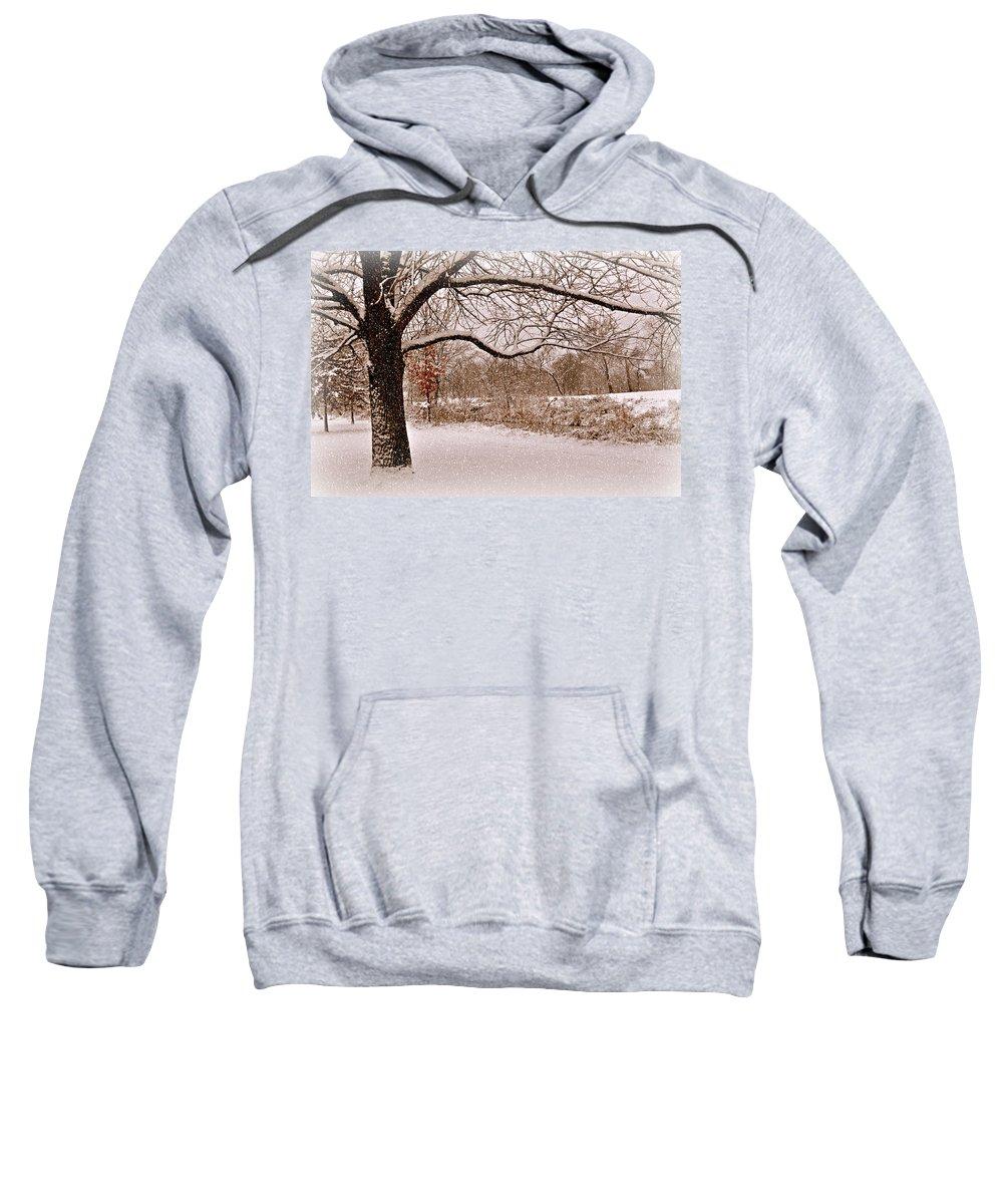 Winter Sweatshirt featuring the photograph Winter Scene by Marty Koch