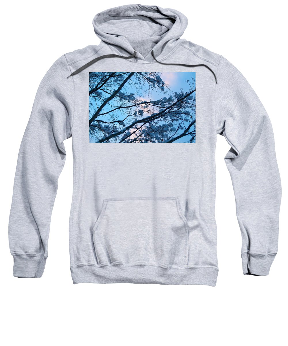 Blue Sweatshirt featuring the photograph Winter Sky And Snowy Japanese Maple by Allan Morrison