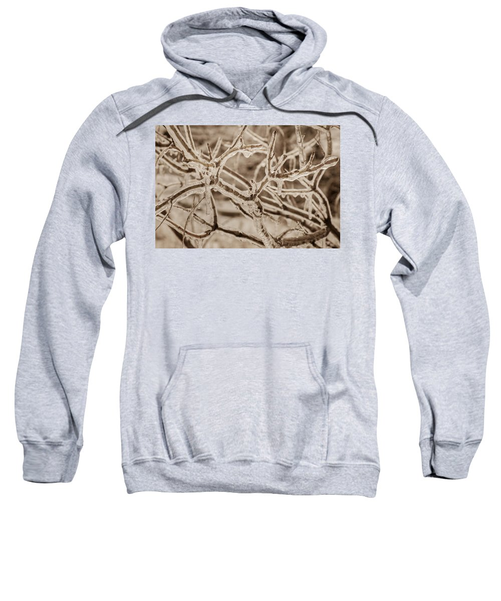 Bill Pevlor Sweatshirt featuring the photograph Winter Tangle by Bill Pevlor