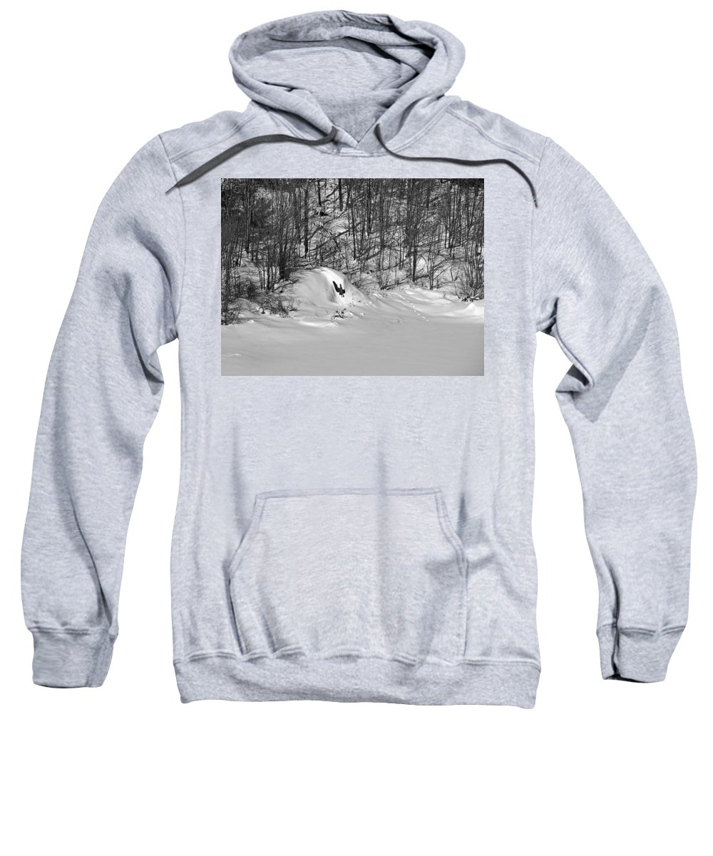 Snow Sweatshirt featuring the photograph Winter Tracks by MTBobbins Photography