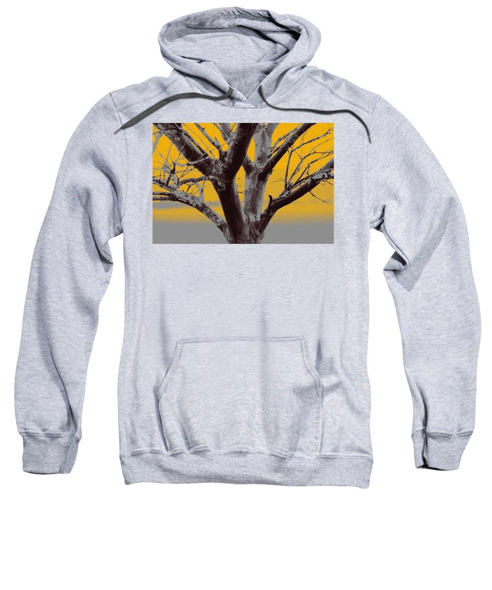 Tree Art Sweatshirt featuring the photograph Winter Trees In Yellow Gray Mist 2 by Olivia Novak