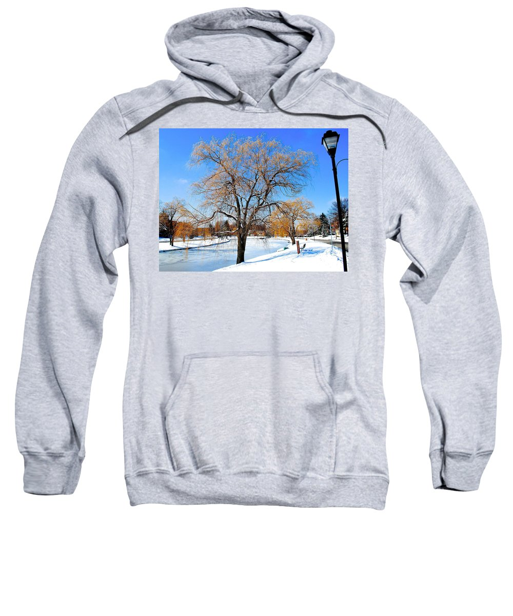 Willow Sweatshirt featuring the photograph Winter Willow by Frozen in Time Fine Art Photography