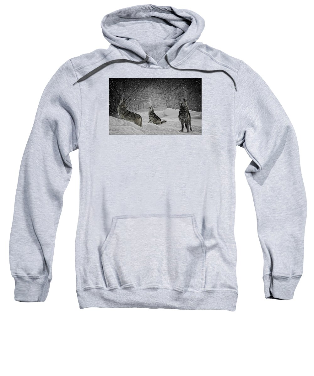 Winters Eve Howling Sweatshirt featuring the photograph Winters Eve Howling by Wes and Dotty Weber