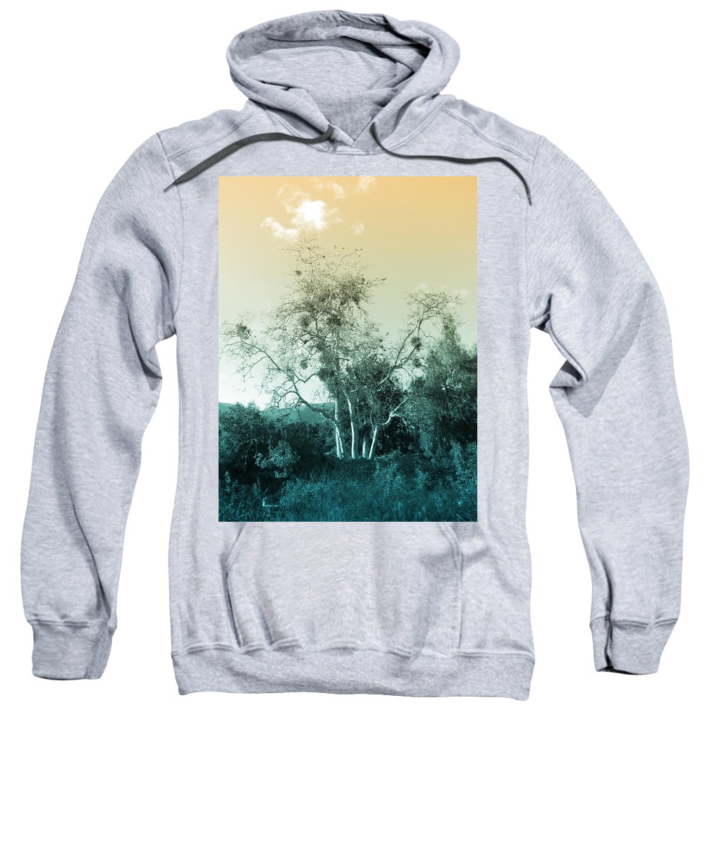 Landscape Sweatshirt featuring the photograph Winter's Tree by Kathleen Grace