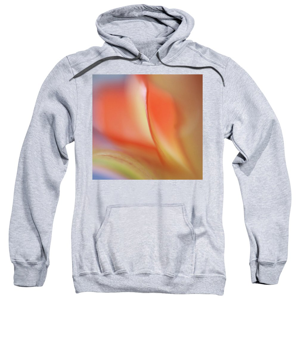 Abstract Sweatshirt featuring the photograph With Love by Annie Snel