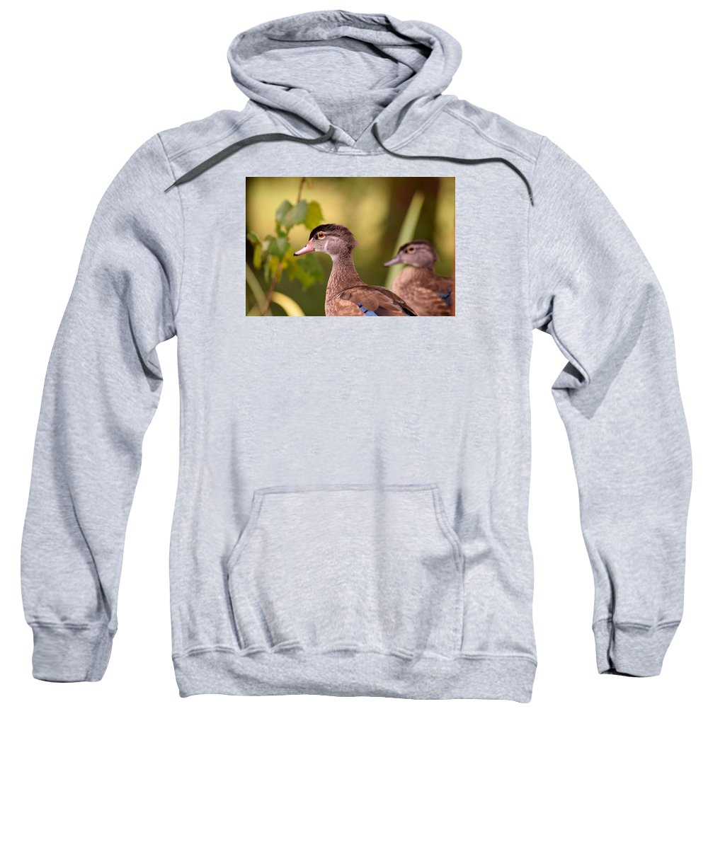 Wood Duck Sweatshirt featuring the photograph Wood Duck Close Up 1 by Sheri McLeroy