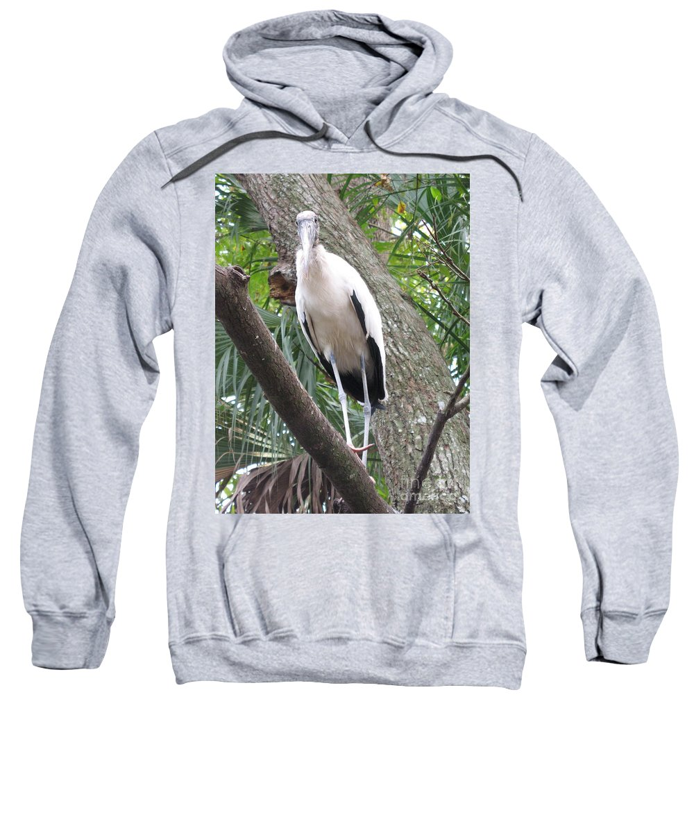 Wood Stork Sweatshirt featuring the photograph Wood Stork On A Limp by Christiane Schulze Art And Photography