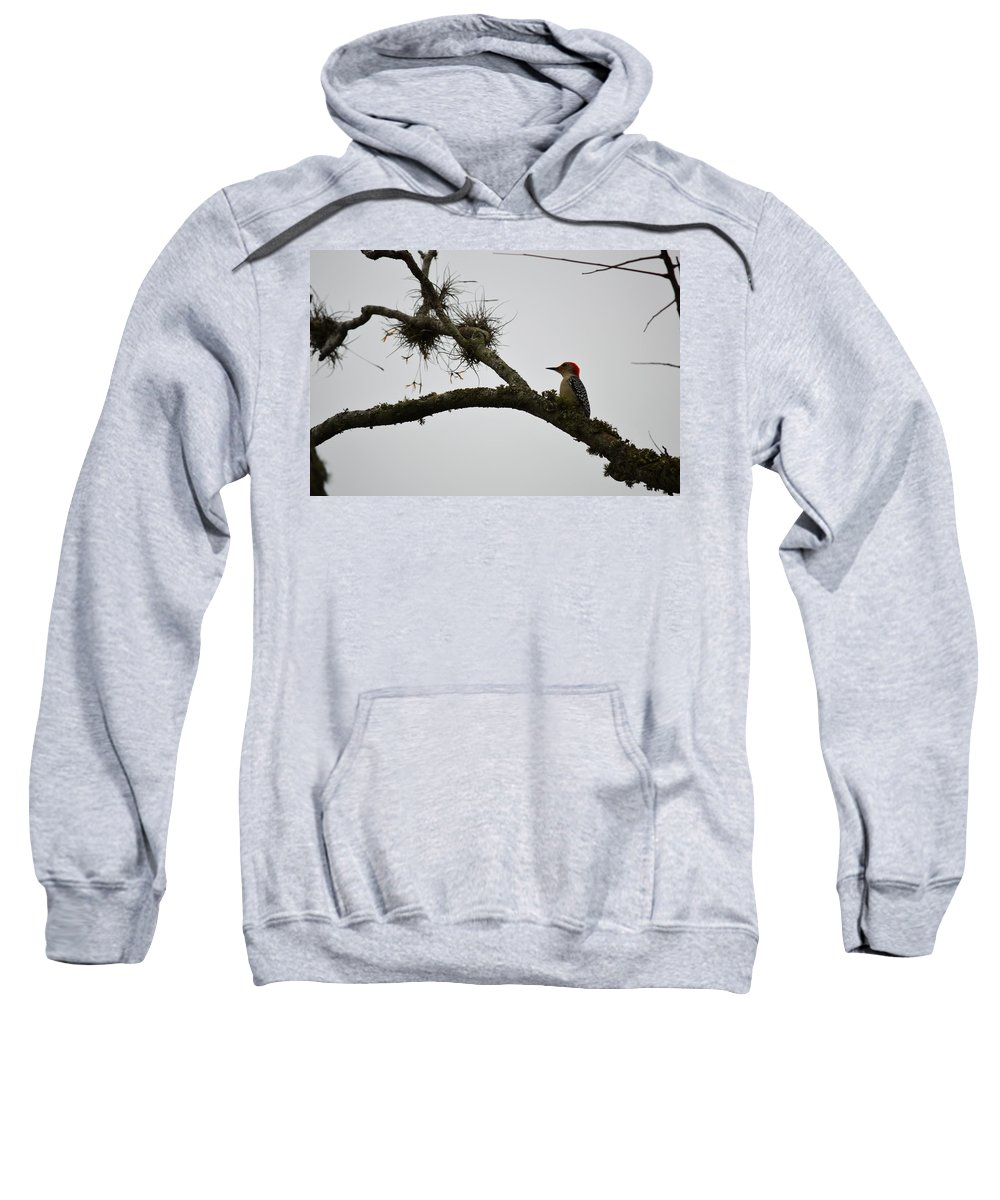 Woodpecker Sweatshirt featuring the photograph Woodpecker On Lookout by Linda Kerkau