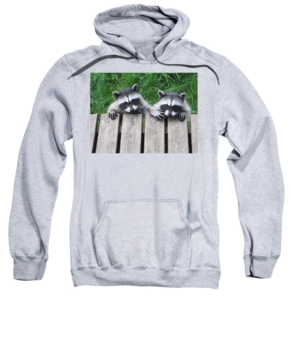 Animals Sweatshirt featuring the photograph Would You Please Move Over by Kym Backland